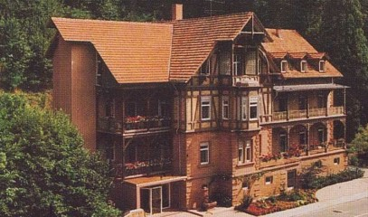 HOTEL LUISE BAD BERGZABERN